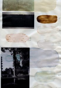 Delphine Wibaux, Document 2020